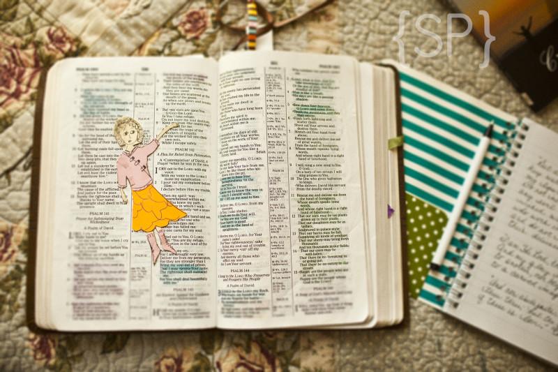 Bible! :)