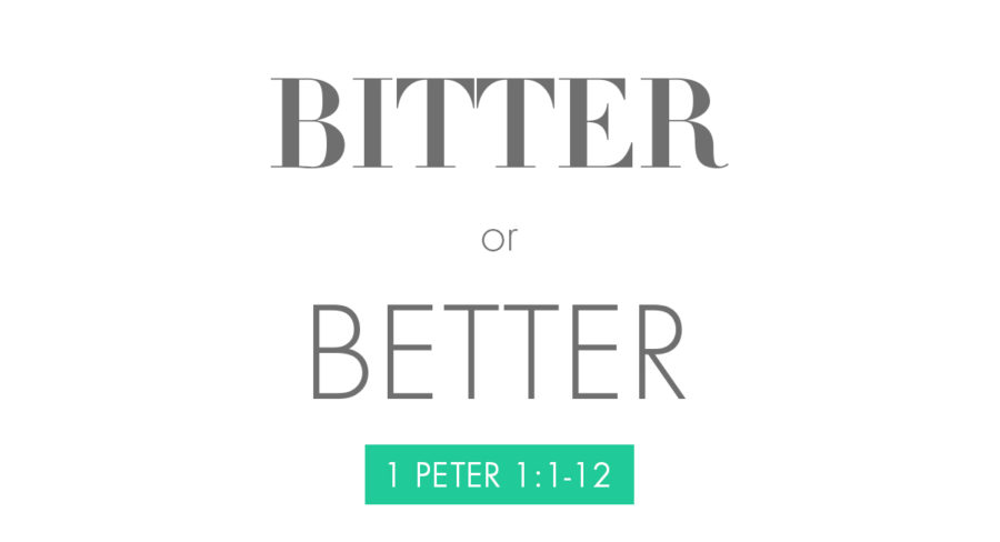 150913_bitter-or-better